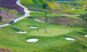ベトナム 新しい 2 つのゴルフプロジェクト